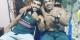 Były zawodnik UFC zabity przez kierowcę Ubera w Brazylii