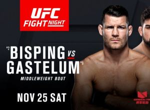 UFC Fight Night 122 Gastelum vs Bisping
