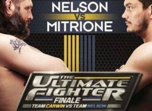 Roy Nelson vs Matt Mitrione