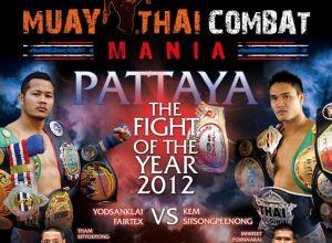 Muay Thai Combat Mania