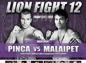 Lion Fight 12