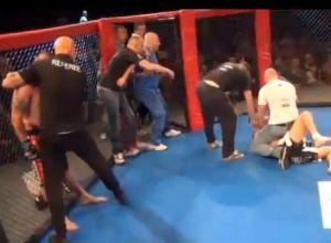 MMA Brawl