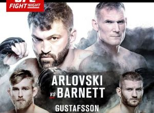 UFC Fight Night 93 Arlovski vs. Barnett Hamburg