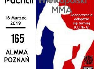 PLMMA 165 - Puchar Wielkopolski