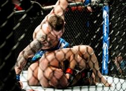 UFC Kraków - fotorelacja_14
