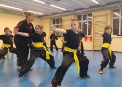 Kung Fu Choy Lee Fut_15