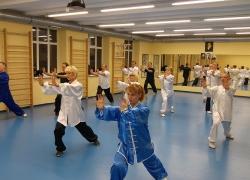 Kung Fu Choy Lee Fut_28
