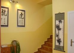 Choy Lee Fut Kung Fu - klub_13