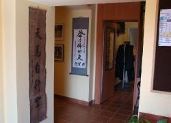 Choy Lee Fut Kung Fu - klub_5