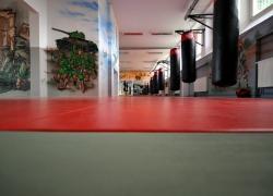 Sportowe Zagłębie Sosnowiec_12