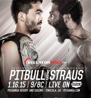 Bellator 132: Freire vs. Straus: Temecula, 16/01/2015