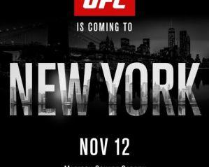 UFC 205 Alvarez vs. McGregor: New York City, 12/11/2016