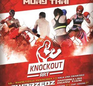 Amatorska Liga Muay Thai Knockout Art IV - wyniki