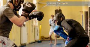 Joanna Jędrzejczyk o sile europejskiego MMA, Rondzie Rousey i Jessice Penne!